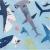 The Shark Side