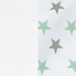 White/Mint Star